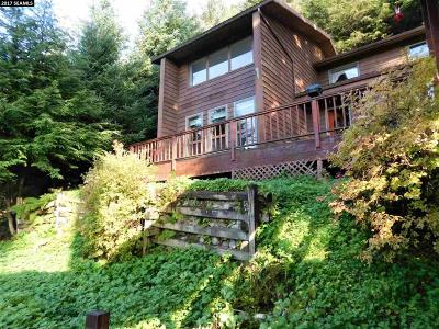jun Single Family Home For Sale: 7860 Glacier Highway