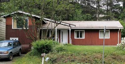 Juneau Borough Single Family Home For Sale: 2981 Douglas Highway