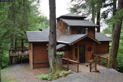 Juneau Single Family Home For Sale: 19895 Cohen Drive