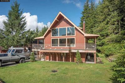 Ketchikan Single Family Home For Sale: 723 Chatham Avenue