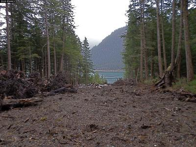Juneau Borough Residential Lots & Land For Sale: 5215 North Douglas Hwy.