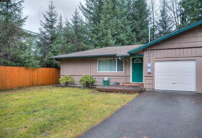 Juneau Single Family Home For Sale: 8993 Long Run Drive