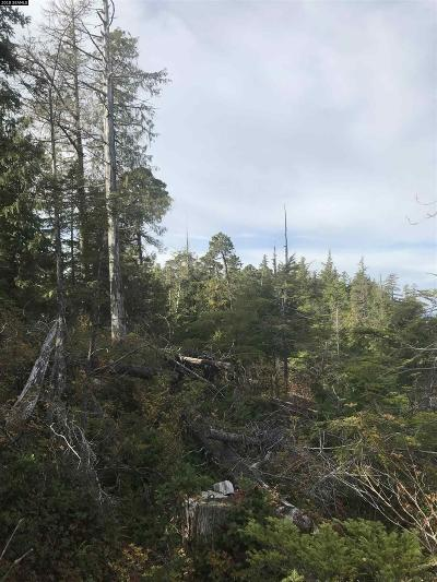 Ketchikan Residential Lots & Land For Sale: Lot 16 Snow Goose Road
