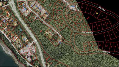 Ketchikan Residential Lots & Land For Sale: Lot 2 Heron Lane