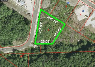 Ketchikan Residential Lots & Land For Sale: Lot 6 Marble Lane