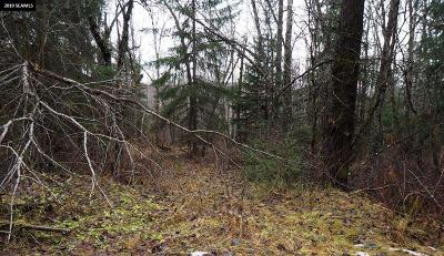 Haines Borough Residential Lots & Land For Sale
