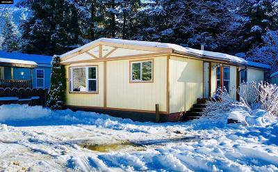 Juneau Borough Mobile Home For Sale: 2895 Mendenhall Loop Road