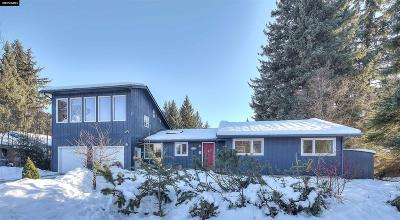 Juneau Borough Single Family Home For Sale: 9213 Sharon Drive