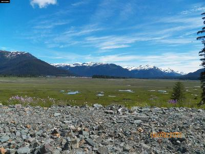 Juneau Borough Residential Lots & Land For Sale: 1505 Mendenhall Peninsula Rd