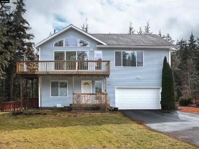Juneau Single Family Home For Sale: 10619 Horizon Drive