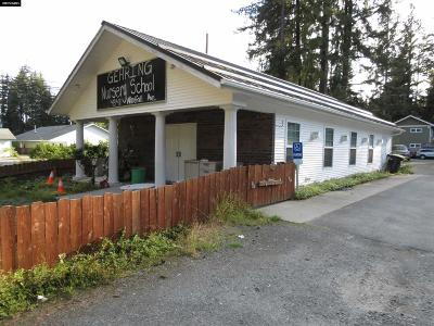 Juneau Commercial For Sale: 4341 Windfall Avenue