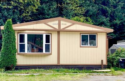 Juneau Mobile Home For Sale: 2895 #71 Mendenhall Loop Road