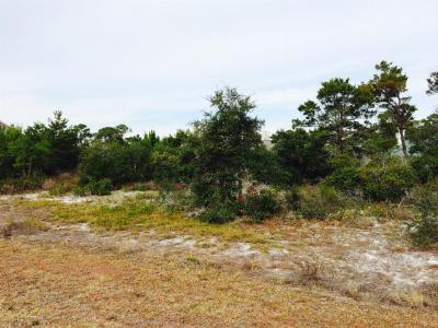 Orange Beach Residential Lots & Land For Sale: Pine Run Drive