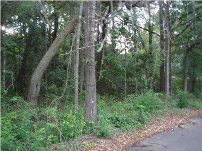 Magnolia Springs Residential Lots & Land For Sale: Holly Street