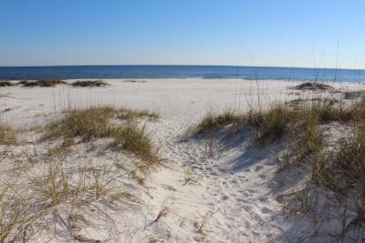 Perdido Key Residential Lots & Land For Sale: 17283 Perdido Key