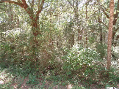 Magnolia Springs Residential Lots & Land For Sale: Laurent Rd