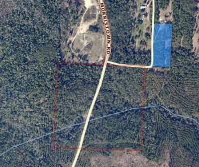 Pensacola, Perdido Key, Jay, Navarre Residential Lots & Land For Sale: 1 Morristown Road
