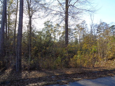 Residential Lots & Land For Sale: Tesone Blvd