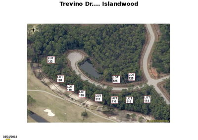 Residential Lots & Land For Sale: Trevino Dr #LOT 125