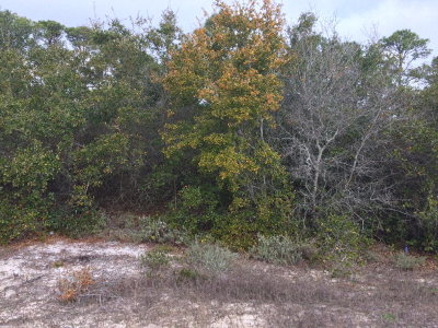 Residential Lots & Land For Sale: River Road #133