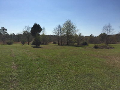 Robertsdale Residential Lots & Land For Sale: 25284 Coopers Cem Rd