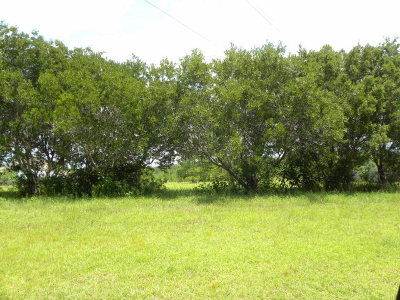 Residential Lots & Land For Sale: Bluefield Plantation Drive #27
