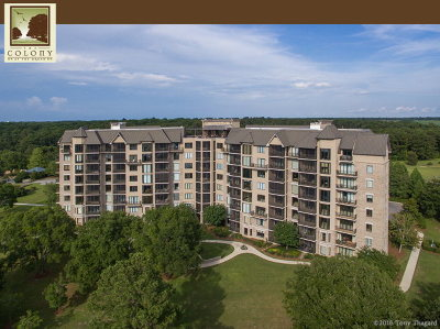 Fairhope Condo/Townhouse For Sale: 18269 Colony Drive #207