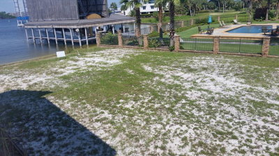 Orange Beach Residential Lots & Land For Sale: 27415 Marina Road