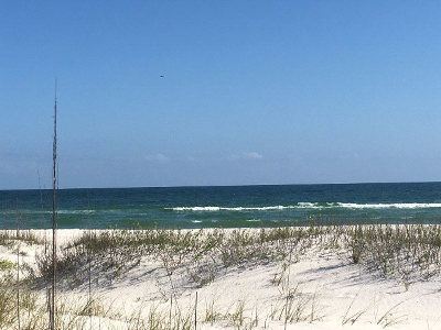 Perdido Key Residential Lots & Land For Sale: 16000 Perdido Key Dr