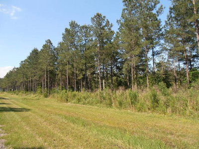 Lillian Residential Lots & Land For Sale: Hixson Road