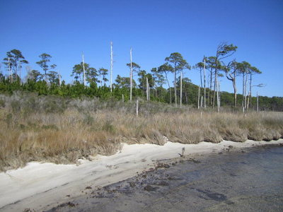 Gulf Shores AL Residential Lots & Land For Sale: $159,900