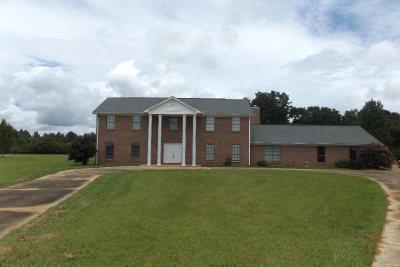 Lillian Single Family Home For Sale: 30601 Hagendorfer Road