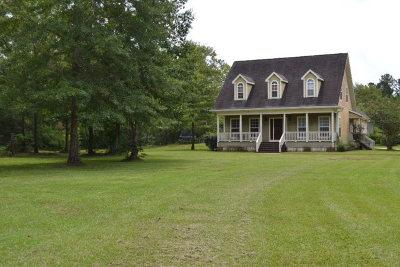 Baldwin County Single Family Home For Sale: 8992 Marlin Street
