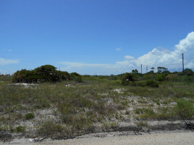 Gulf Shores AL Residential Lots & Land For Sale: $165,000