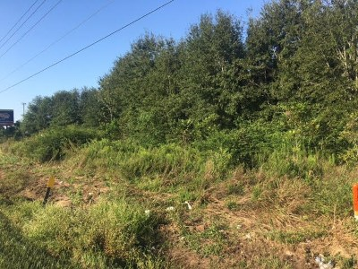 Summerdale Residential Lots & Land For Sale: St Hwy 59