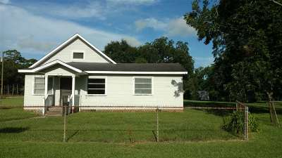 Elberta Single Family Home For Sale: 13308 Chicago Street