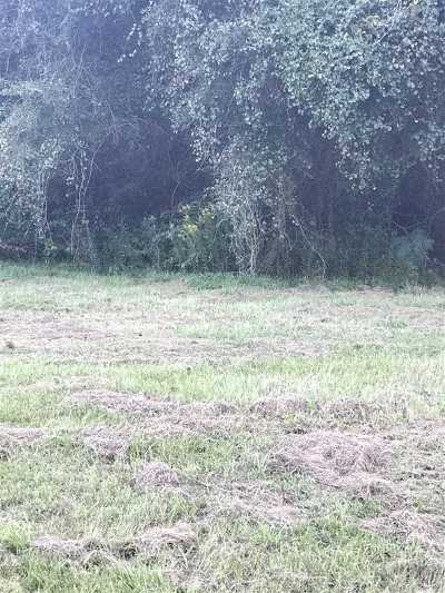 Robertsdale Residential Lots & Land For Sale: E Silverhill Avenue