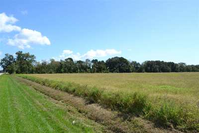 Baldwin County, Escambia County Residential Lots & Land For Sale: County Road 26