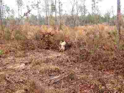 Robertsdale Residential Lots & Land For Sale: Lot 6 County Road 64