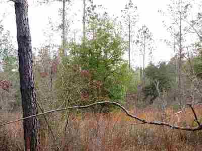 Robertsdale Residential Lots & Land For Sale: Lot 1 Osprey Lane