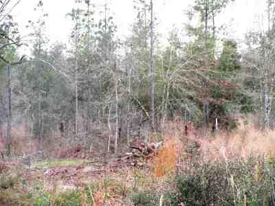 Robertsdale Residential Lots & Land For Sale: Lot 2 Osprey Lane