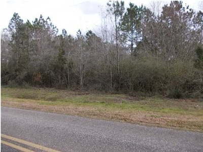 Robertsdale Residential Lots & Land For Sale: County Road 87