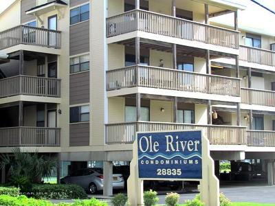 Orange Beach Condo/Townhouse For Sale: 28835 Perdido Beach Blvd #113