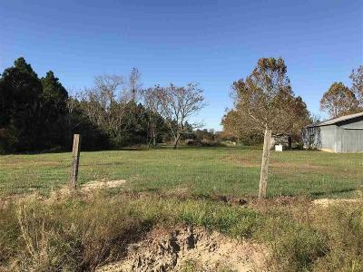 Robertsdale Residential Lots & Land For Sale: 20637 County Road 68