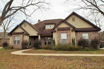 Fairhope Single Family Home For Sale: 382 Barndling Street