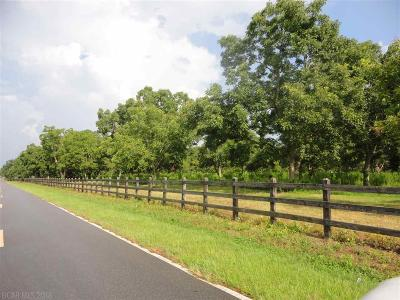 Fairhope Residential Lots & Land For Sale: County Road 11