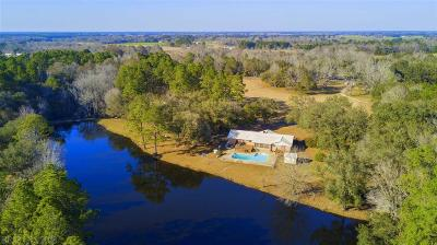 Mobile County Single Family Home For Sale: 14151 Fort Lake Rd