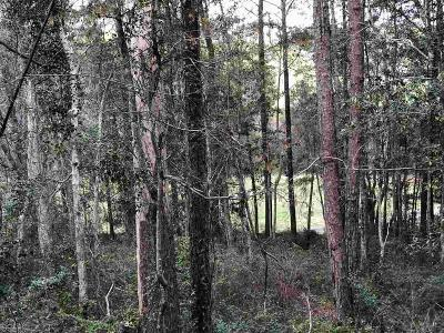 daphne Residential Lots & Land For Sale: 123 Tomrick Circle