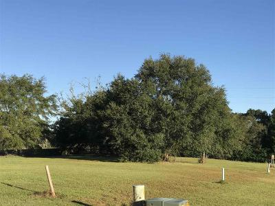 Robertsdale Residential Lots & Land For Sale: 20955 W Southtown Dr
