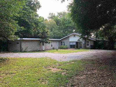 Fairhope Single Family Home For Sale: 509 N Mobile Street